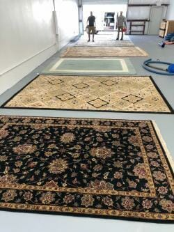 Oriental rug cleaning service - Rugs drying after cleaning